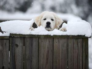 635606285488568812-AP-Winter-Weather-Virginia